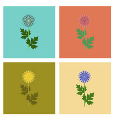 Assembly flat flower aster vector