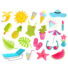 collection of summer stuff vector image