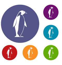 King penguin icons set vector
