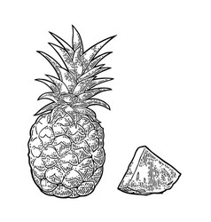 Whole and slice pineapple black vintage vector