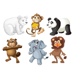 Animals in the woods vector image