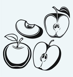 Fresh apple with leaf and slice vector