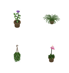isometric flower set of plant grower flower and vector image vector image