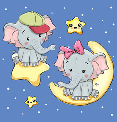 lovers elephants on a moon and star vector image vector image
