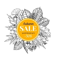 Autumn sale banner with leaves and berry vector