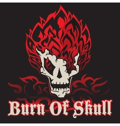 Burn of skull vector