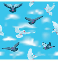 Pigeons and white doves in the sky as seamless pat vector