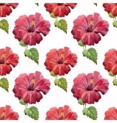 Hibiscus1 vector