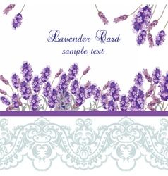 Lavender card with lace border vector