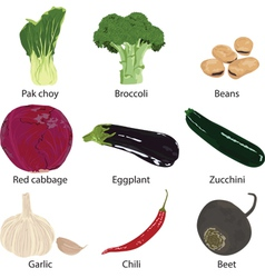 set vegetables isolated vector image