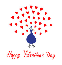 happy valentines day greeting card peacock open vector image