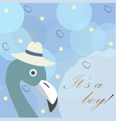 Baby boy birth announcement cute bird announces vector