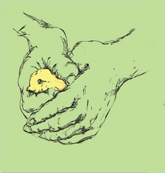 bird in a hand vector image vector image