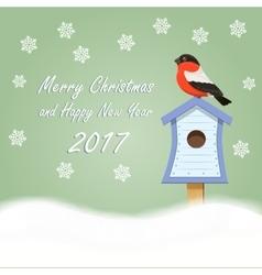 Christmas card Bullfinch snowflakes and New Year vector image