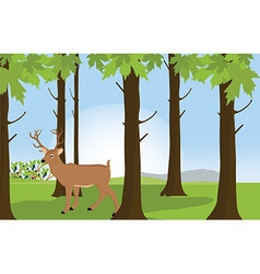Forest landscape with deer vector