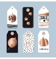 Modern set of autumn fall sale and quality labels vector image vector image
