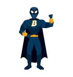 Superhero avatar icon image vector