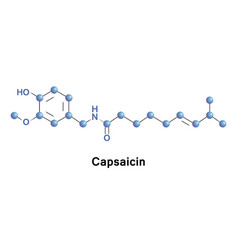 Capsaicin is an active component of chili vector