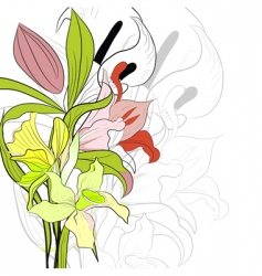 Spring background with lily flowers vector