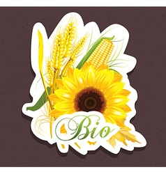 Bio sunflower tag vector