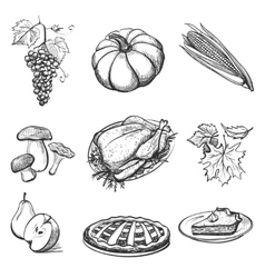 Set of hand drawn Thanksgiving attributes vector image