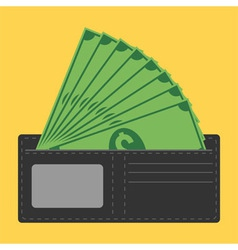 Money in wallet vector