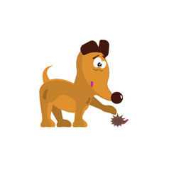 cute little dog vector image vector image