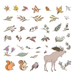 Forest Fall Elements Set vector image