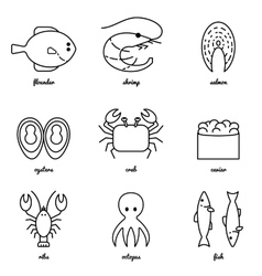 Line art sea food icon set infographic elements vector