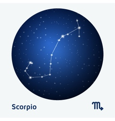 Scorpio constellation vector
