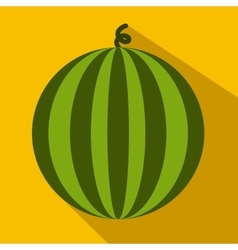 Watermelon flat icon vector