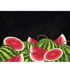 Watermelon fruit composition on chalkboard vector