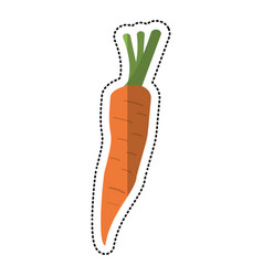 cartoon carrot vegetable nutrition icon vector image vector image