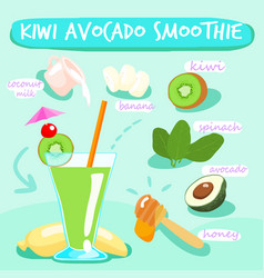 Kiwi avocado delicious healthy smoothies vector