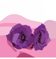 Spring Summer Purple Flowers vector image