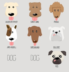 Dog type cartoon vector