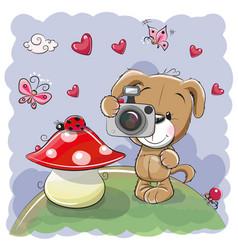 cute cartoon dog with a camera vector image