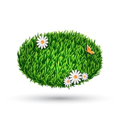 Green grass oval with chamomiles and butterfly vector