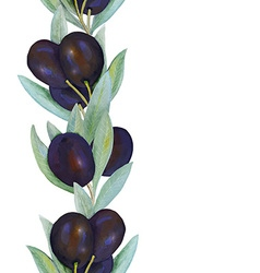 Olives border dark vector