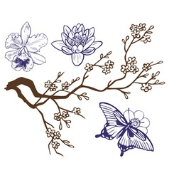 Drawing branch with flowers and butterflies vector
