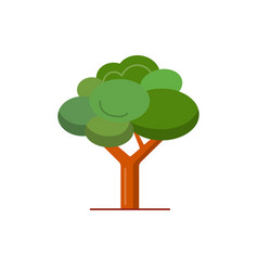 green tree icon in flat style vector image vector image
