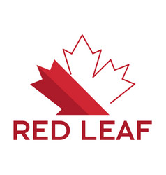red maple leaf logo design vector image vector image