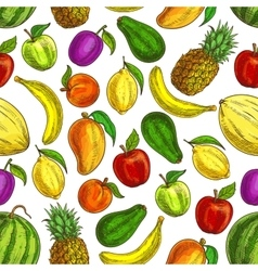 Fruit seamless pattern of tropical fruits vector image