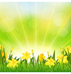 Flowers Easter Background vector image