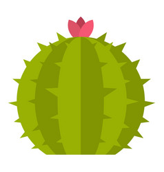 Cactus with flower icon isolated vector
