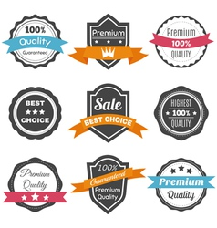 Collection of retro vintage labels Best choice vector image vector image