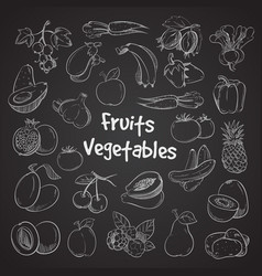 health food doodle vegetables and fruits hand vector image vector image