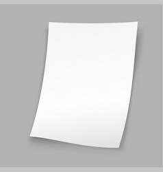 Sheet paper gray background vector