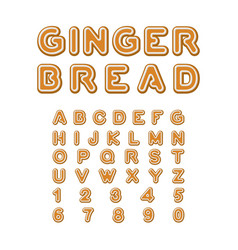 Gingerbread font christmas cookie alphabet mint vector