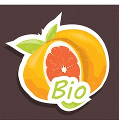 Bio orange tag vector